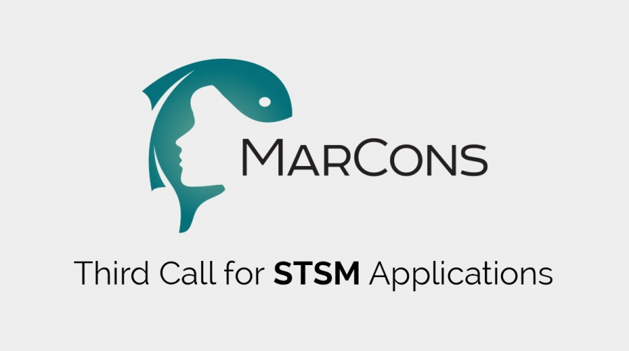 Third Call for STSM Applications